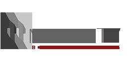 mirrortv logo